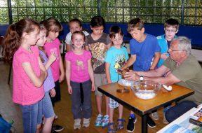 Stadtteilhaus FWH Sommer 2016 Kokos (2)