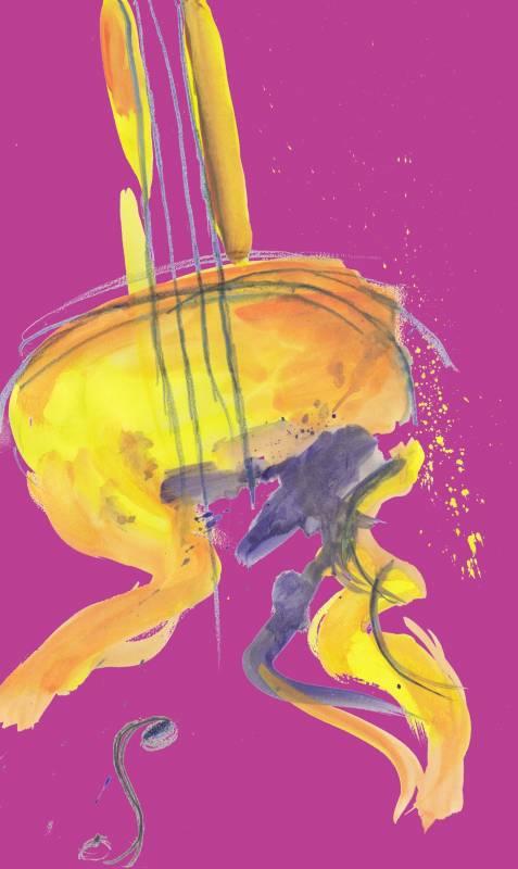 Konzert mit Musik für Jugendstreichorchester und Kammermusik Quelle: Stadt Sankt Augustin