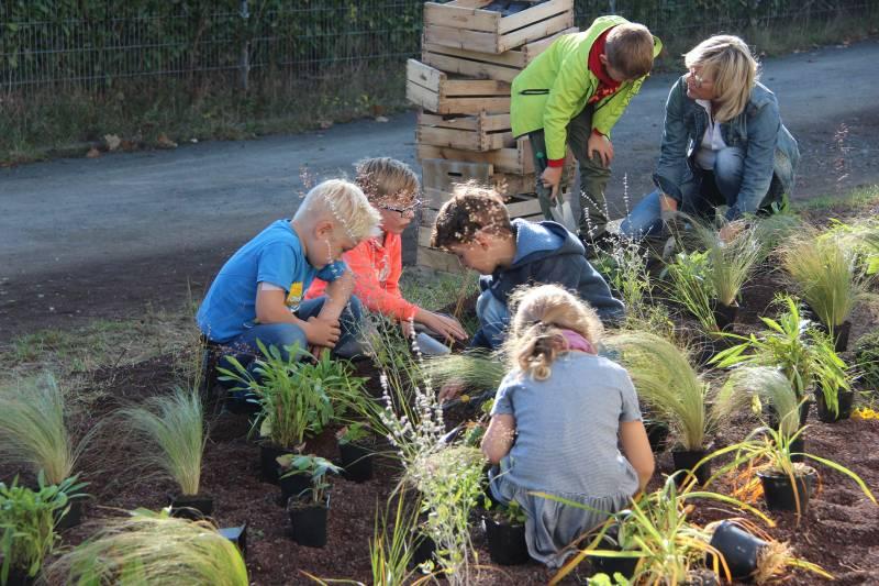 Kinder kreieren Schmetterlingsgarten Quelle: Stadt Hennef