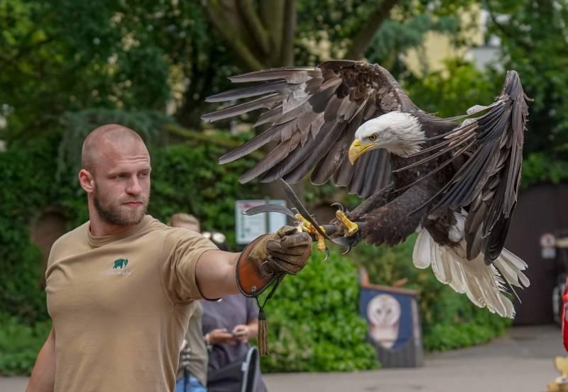 Flugschau im Kölner Zoo
