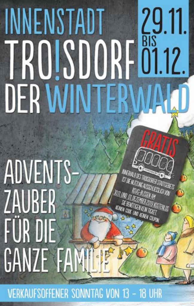 Winterwald in Troisdorf