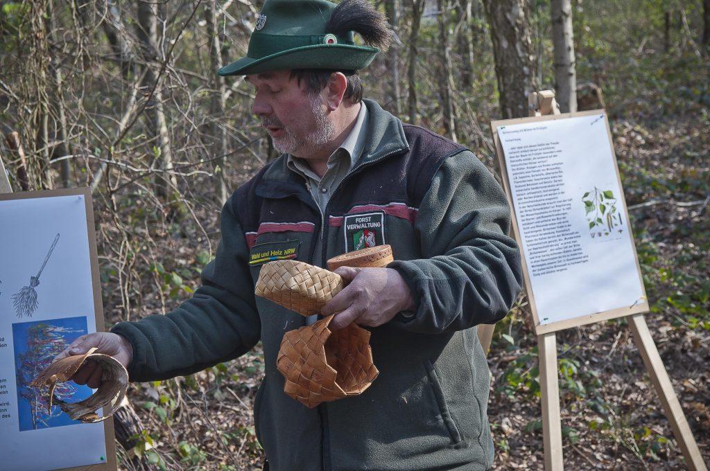 Gesundheit aus dem Wald Birkenwasser, Baumharze und Weidenrinde –