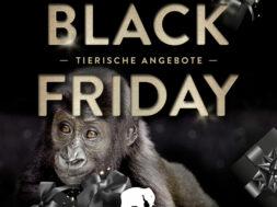 _Black_Friday