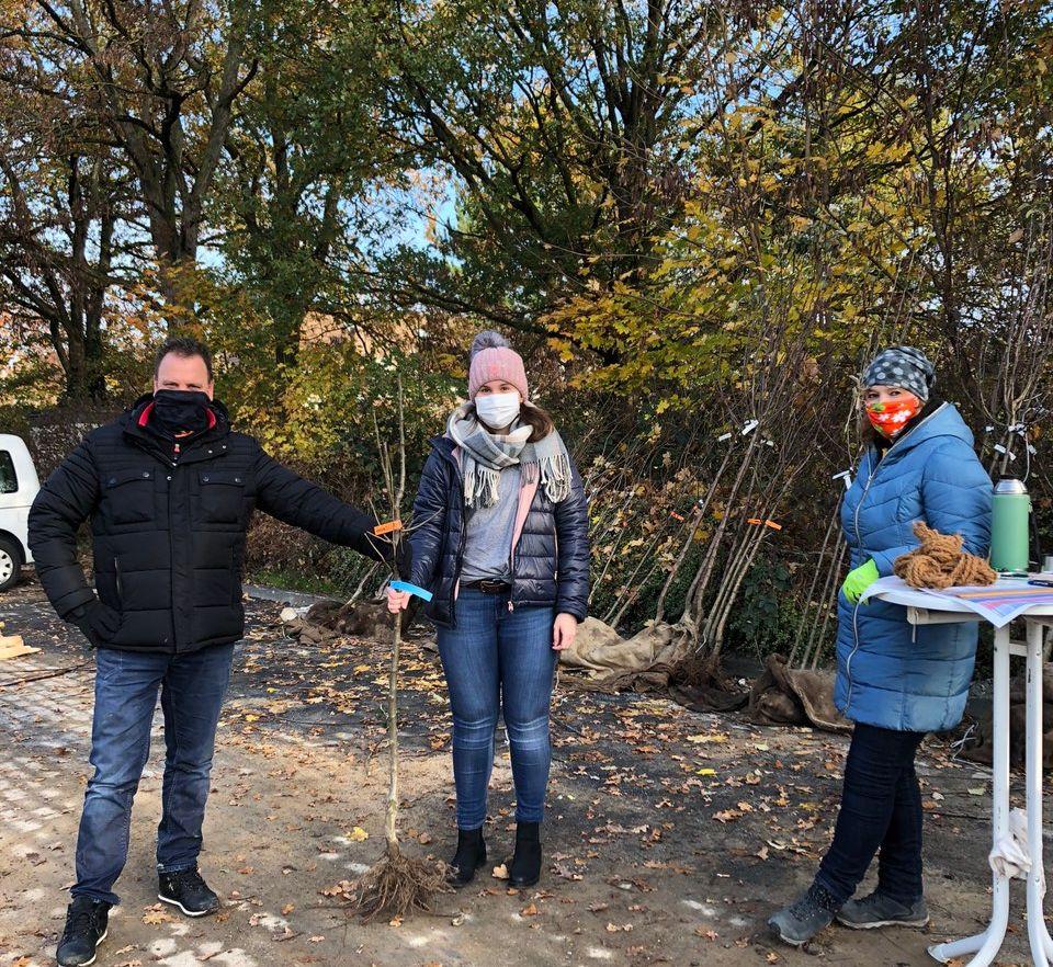 Beliebte Aktion des städtischen Umweltamtes: Junge Obstbäume für Troisdorfer Gärten
