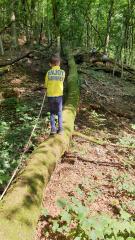 Abenteurer/-innen gesucht – Das Team der Naturschule freut sich auf eine spannende Zeit in den nächsten Schulferien