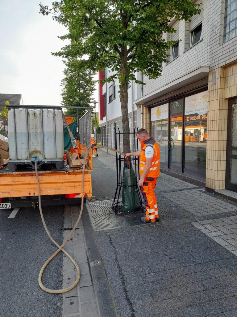 Bewässerung von Bäumen an der Hauptstraße und Wahlscheider Straße durch Bewässerungssäcke